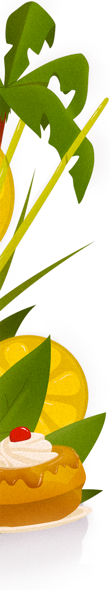 Illustration palmier